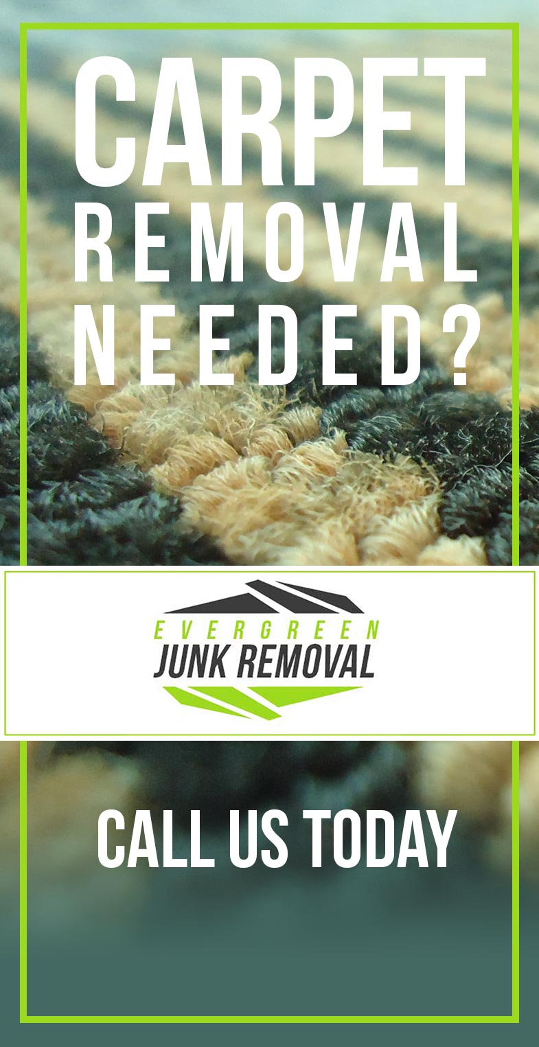 Carpet Removal Hollywood FL