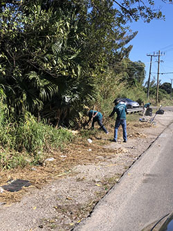 Coconut Creek junk hauling company