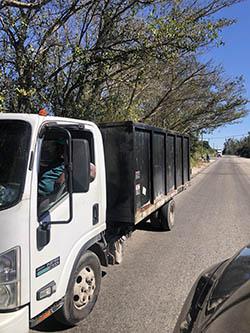 Coconut Creek removal service