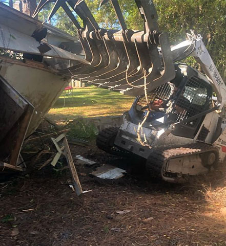 Palmetto shed removal