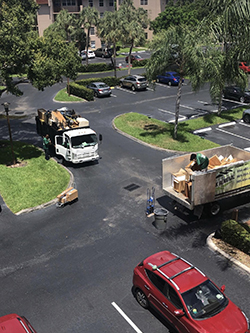 Plantation junk hauling company service