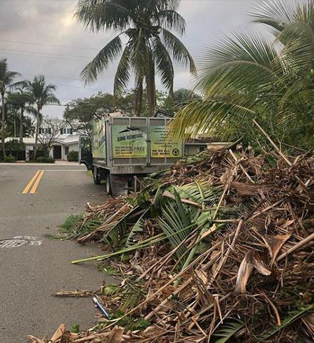 Storm Debris Removal Key Biscayne