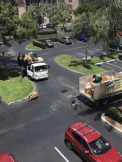 Sunrise junk hauling company service