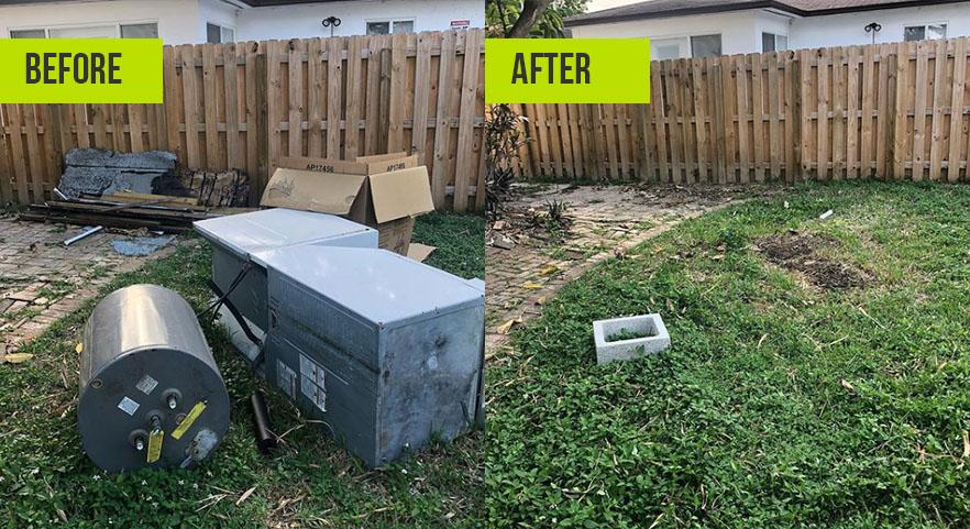 Junk Clean Up Winter Garden